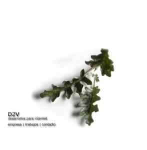 D2v Web 2002
